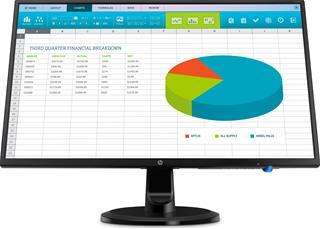 HP INC HP N246v Monitor