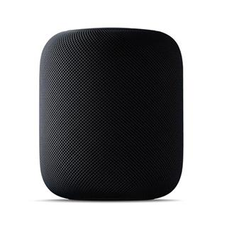 ALTAVOZ APPLE HOMEPOD SPACE GREY