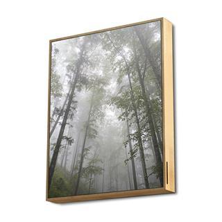 Energy System Frame Speaker Forest (50W. True ...