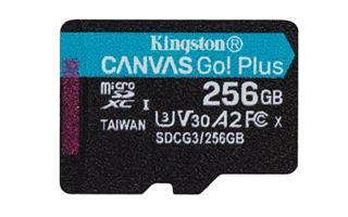 Tarjeta de memoria Kingston Canvas Go! Plus ...