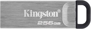 Pendrive Kingston DataTraveler DTKN/256GB USB3.2