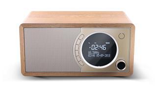 Sharp DR-450 radio Personal Digital Marrón. Acero ...