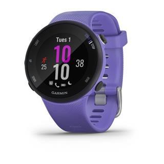 Smartwatch Garmin Forerunner 45S 39mm Iris